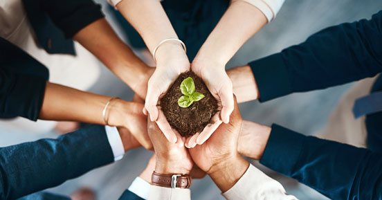 Making an Impact Through Corporate Sustainability Initiatives- People holding a sapling