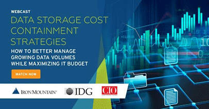Data Storage Cost Containment Strategies